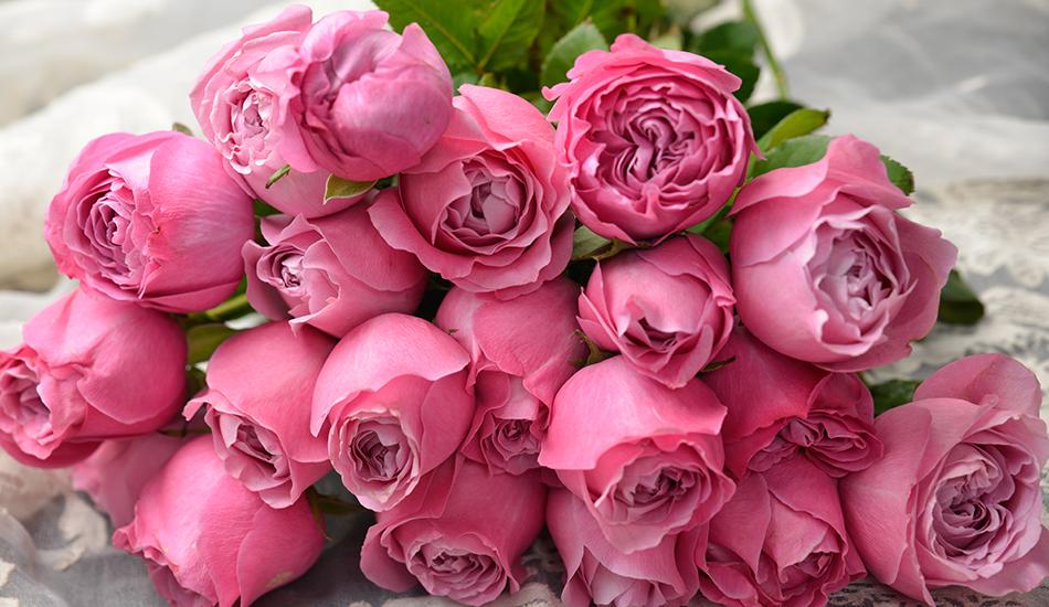 20 röda rosor betydelse