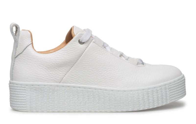 coola sneakers dam