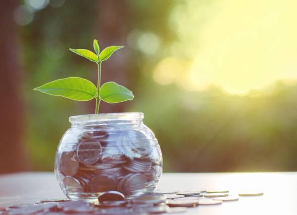Ta reda på om dina pensionspengar och besparingar är placerade i miljöfarliga branscher.