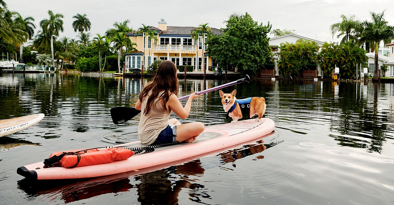 Airbnb lanserar upplevelser med djur – med etiskt fokus