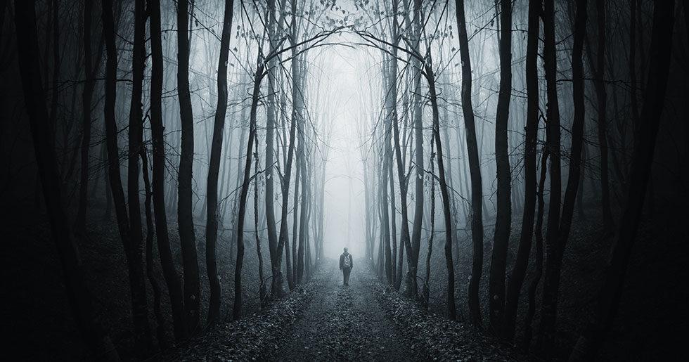 6 skrackpoddar infor halloween