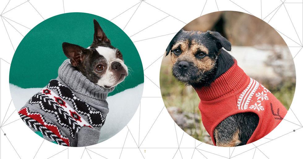 a0a0ff4bd54a Hundkläder till jul – fina jultröjor att klicka hem | ELLE