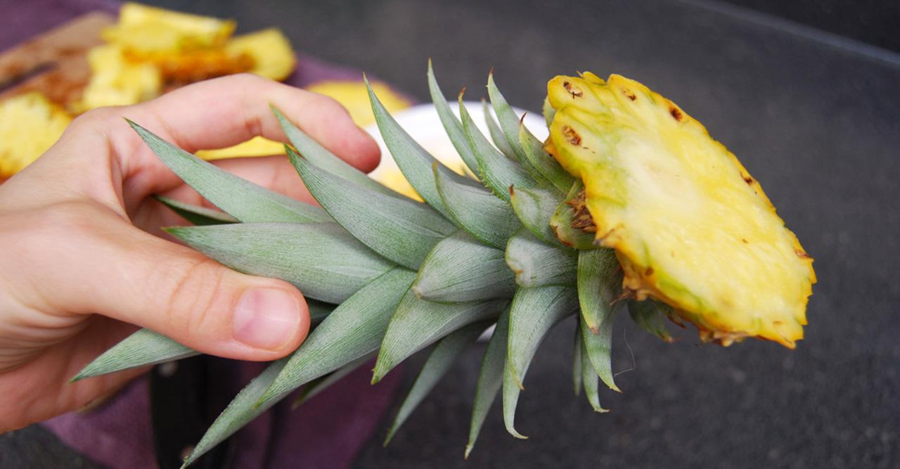 Odla din egen ananas av skrutten!