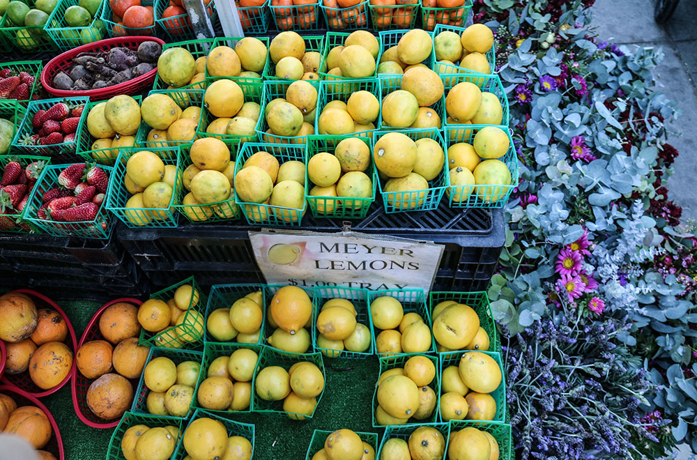 farmers-market-ocean-beach-lemons