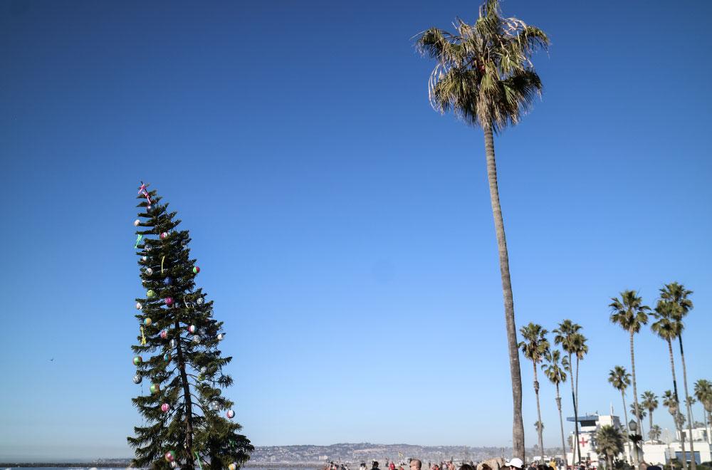 ocean-beach-holidays-christmas