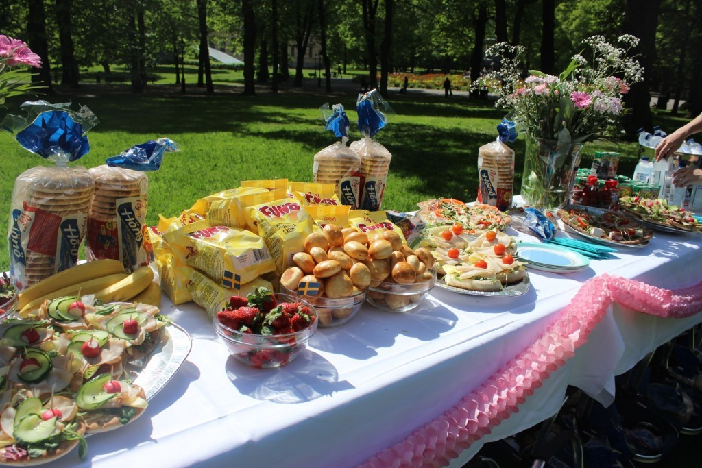 Loppi picknick i parken