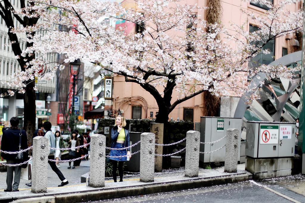 Idag för precis ett år sedan åkte jag ensam till Tokyo i fem veckor. En  present till mig själv för att jag skrivit klart en hel bok till. b96644cae0019