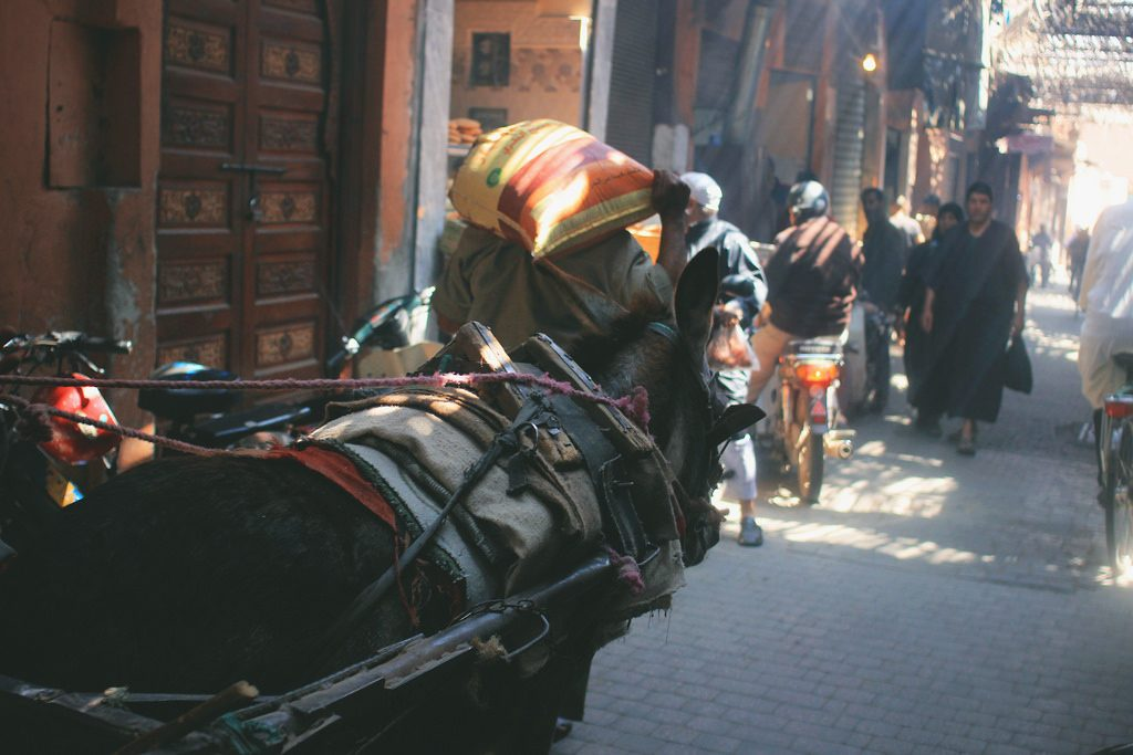 an afternoon in the medina.