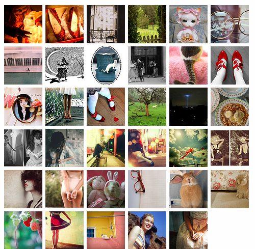 flickr favoriter september